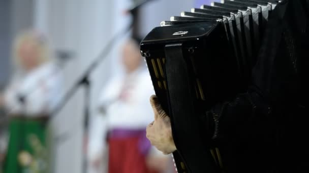 Playing the accordion (bayan). Classic, stage, dance group in traditional costumes. Russia.