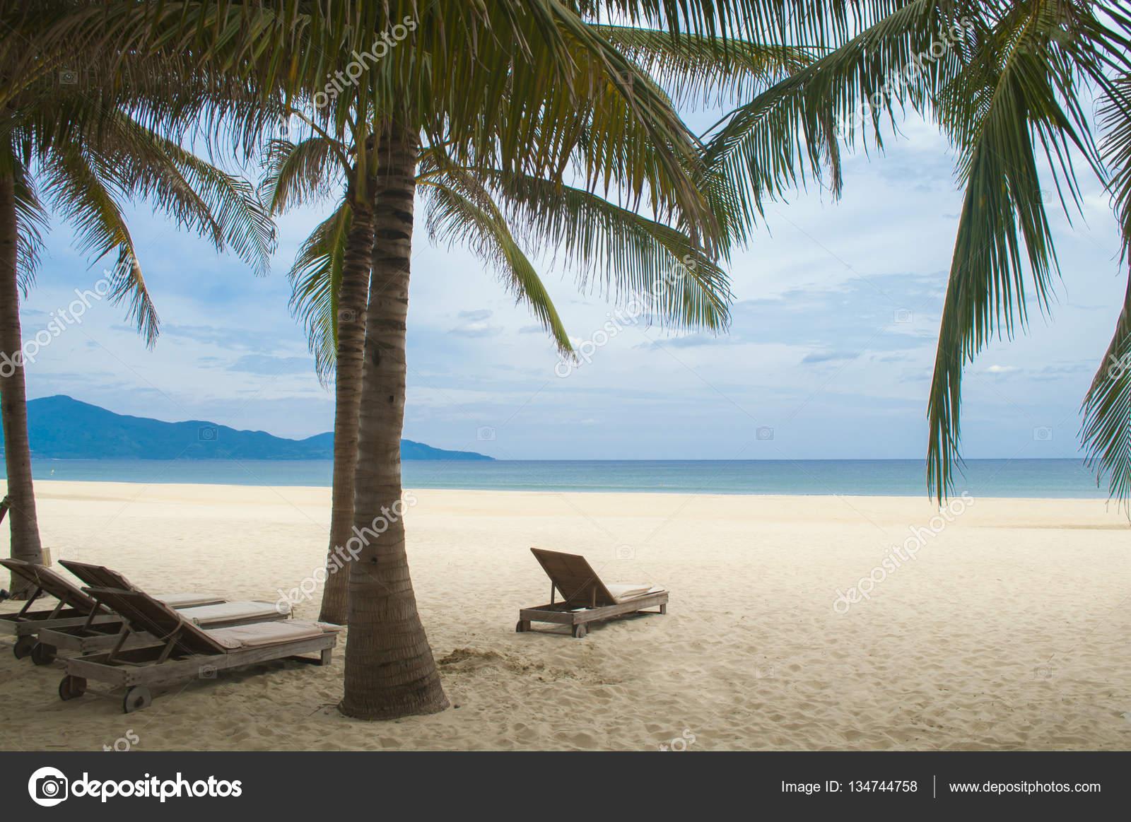 Hamacas y palmeras en la playa de my khe da nang vietnam - Hamacas de playa ...