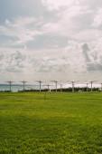 zelená a čerstvá tráva v blízkosti venkovních slunečníků a moře