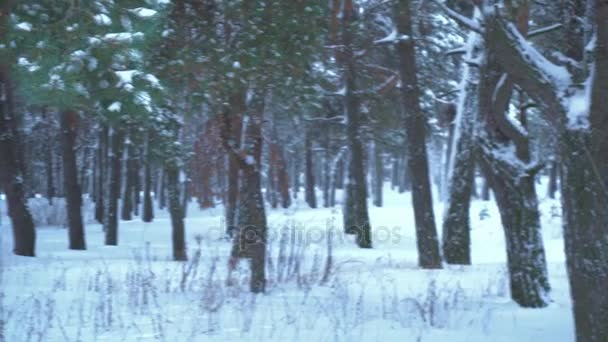 Vidám lány fúj el a hó