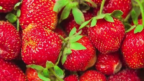 makro jahod točí v kruzích zblízka