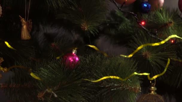 krásný zelený vánoční strom s hračkami a věnec na něm