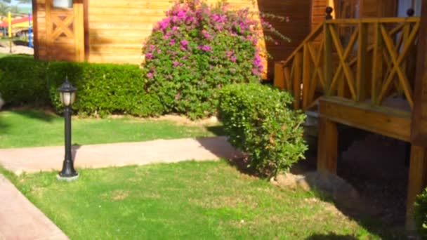 Case Piccole In Legno : Piccole case di legno e gli alberi verdi u video stock