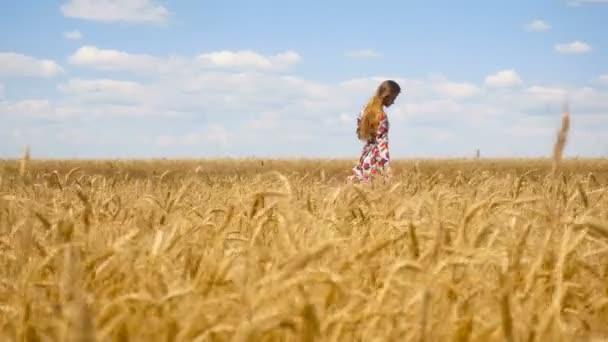 krásná dáma s dlouhými vlasy jde do pšeničné pole