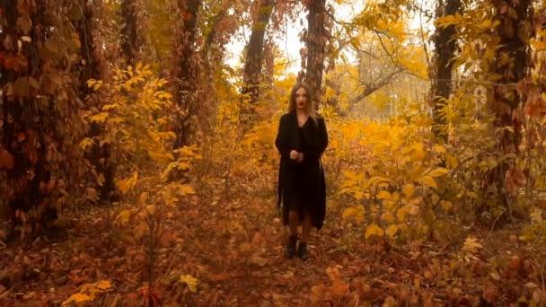 charming girl in black coat walks on golden autumn forest