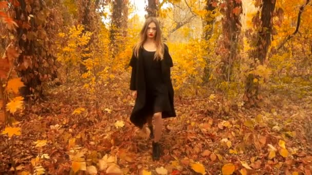 lady in black coat walks on golden autumn forest