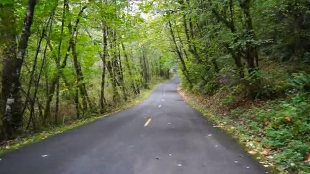 Asfaltová cesta přes chráněný les venkovní krajinu