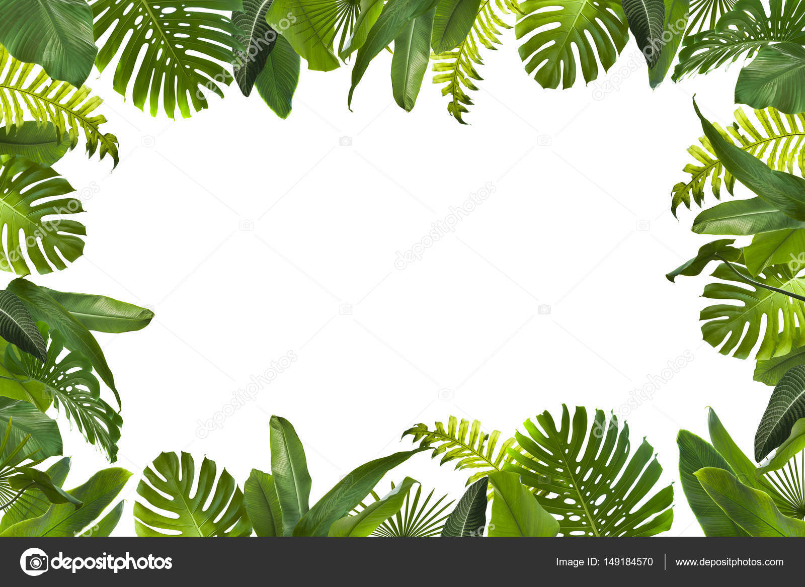 Tropical Leaves Background Stock Photo C Piolka 149184570 Huge collection, amazing choice, 100+ million high quality, affordable rf and rm images. https depositphotos com 149184570 stock photo tropical leaves background html