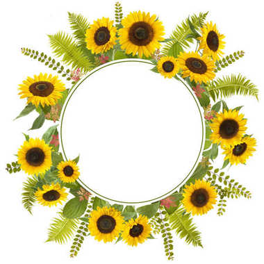 adorable sunflower background with fern and leaves