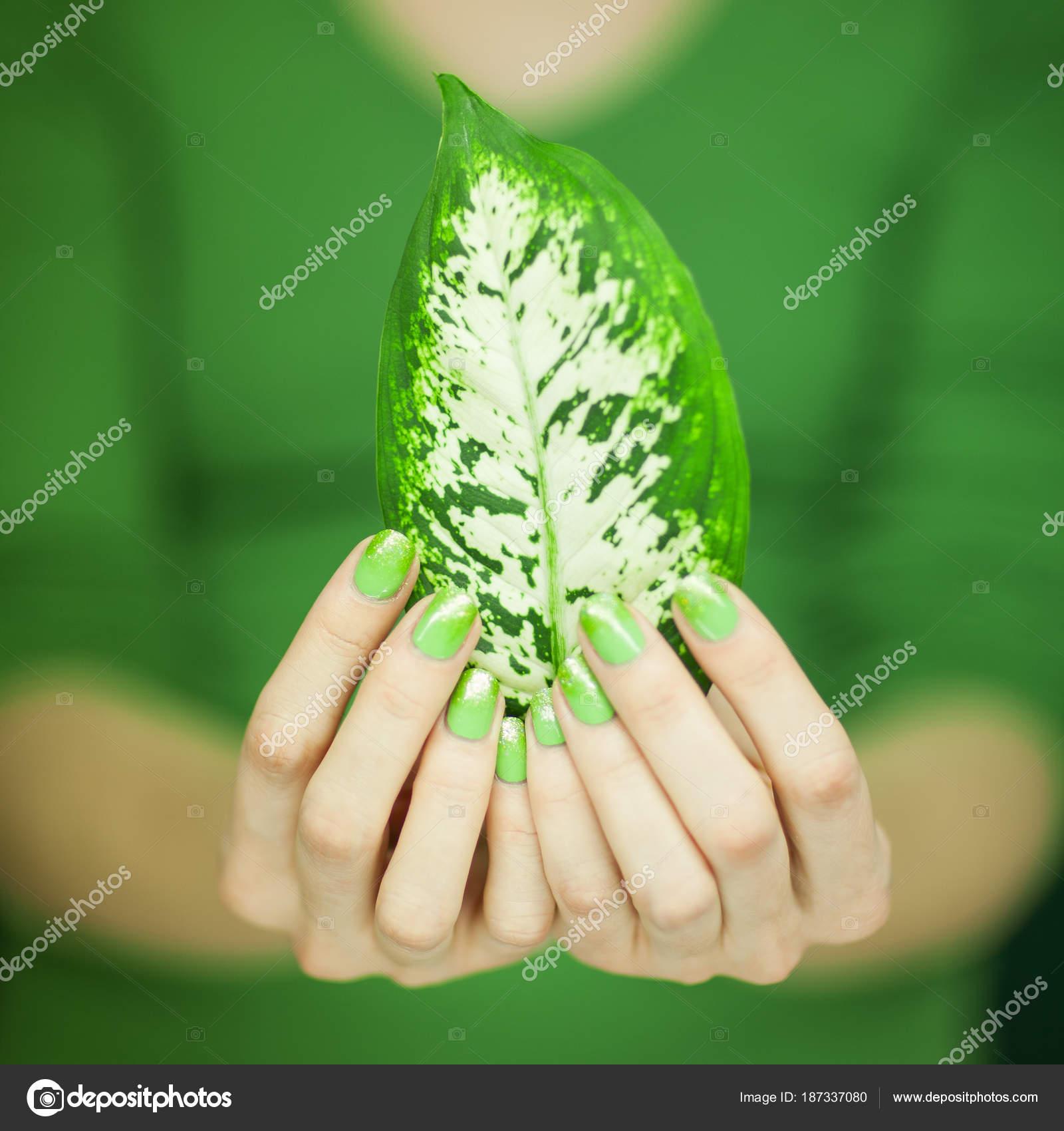Sale Las Manos Mujer Con Esmalte Uñas Verde Sosteniendo Algunos ...