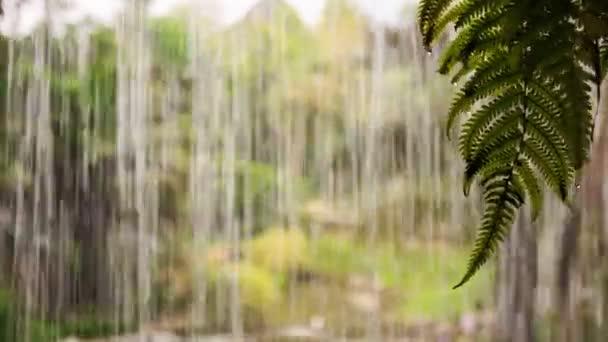 Water Drops and Streams