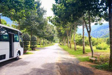Tourist Bus on Road in Park in Vietnam