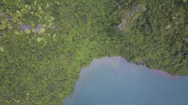 drone nyugodt ovális fjord körül buja trópusi növények híres Ha Long-öböl a sziget dombok felett emelkedik