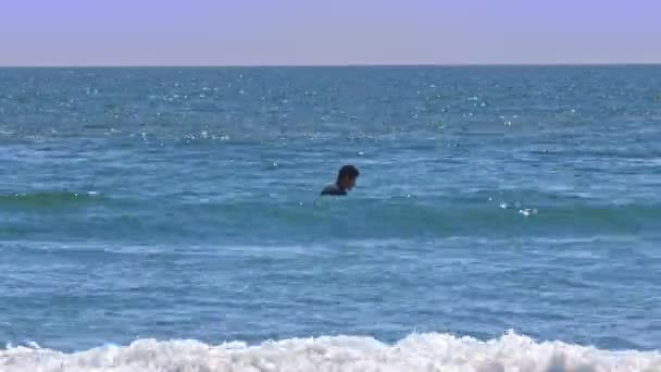 brunette man swims to long blackboard in vast calm sea against people riding water bike fast