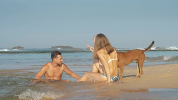Family of mother, father and daughter playing with dog on sea coast