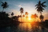 Fotografie Tropická Pláž při západu slunce