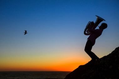 Silhouette of musician play tuba