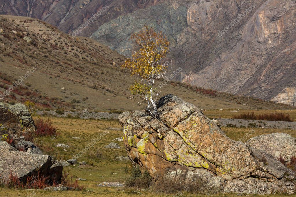 Kalbak-Tash in Altai mountains, Russia.
