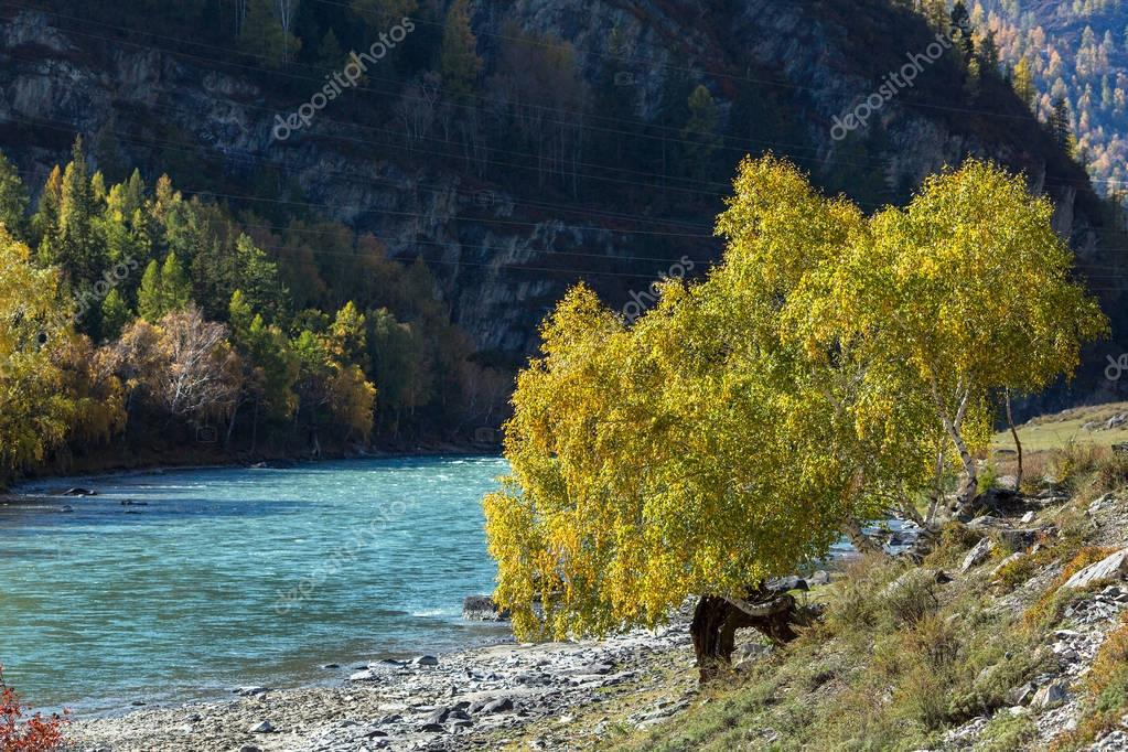 View of the Chuya River, Altai Republic, Russia.