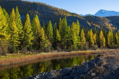 Katun river of the Altai mountains, Russia.