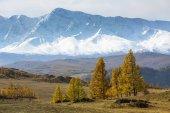 Photo View of the snowy mountain North-Chuya ridge, Altai Republic, Russia