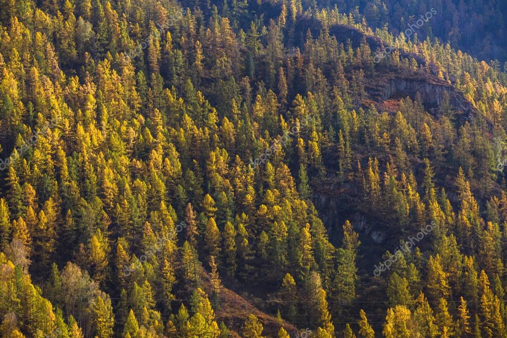 Views of the landscapes of the Mountains in autumn, Altai Republic, Russia.