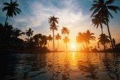 Krásné tropické pláži palm siluety stromů za soumraku
