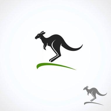 Kangaroo set. Vector