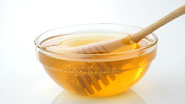Lžička medu máčené v medu v pomalém pohybu