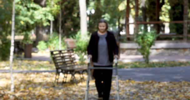 Senior woman walking with walker in autumn park. The person comes in focus.