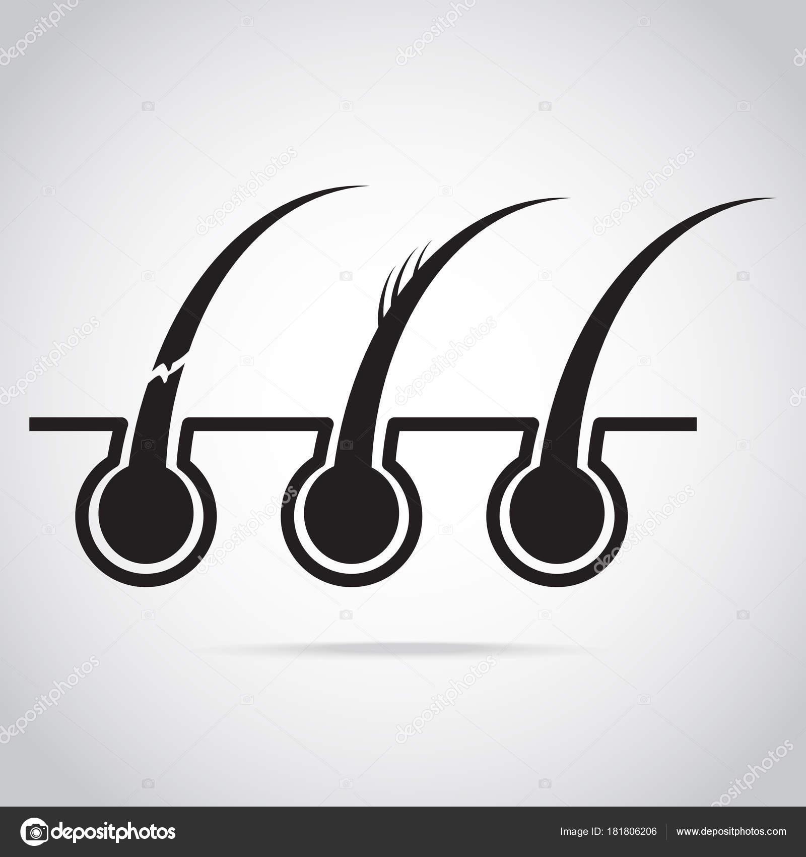 Haarproblem und Symbol von Haut, Kopfhaut und Haarpflege ...