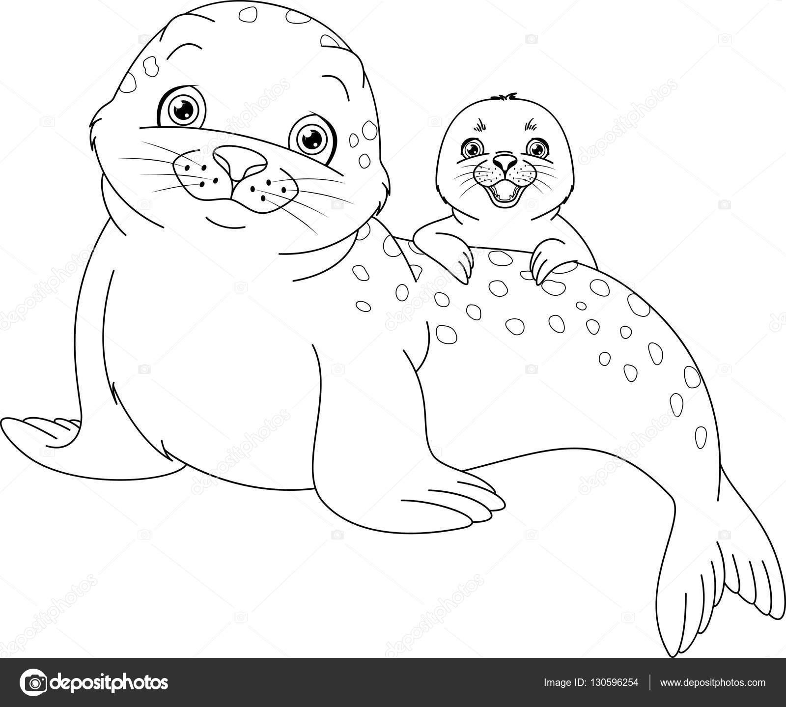 Coloriage Bebe Phoque.Coloriage Famille Seal Image Vectorielle Malyaka C 130596254