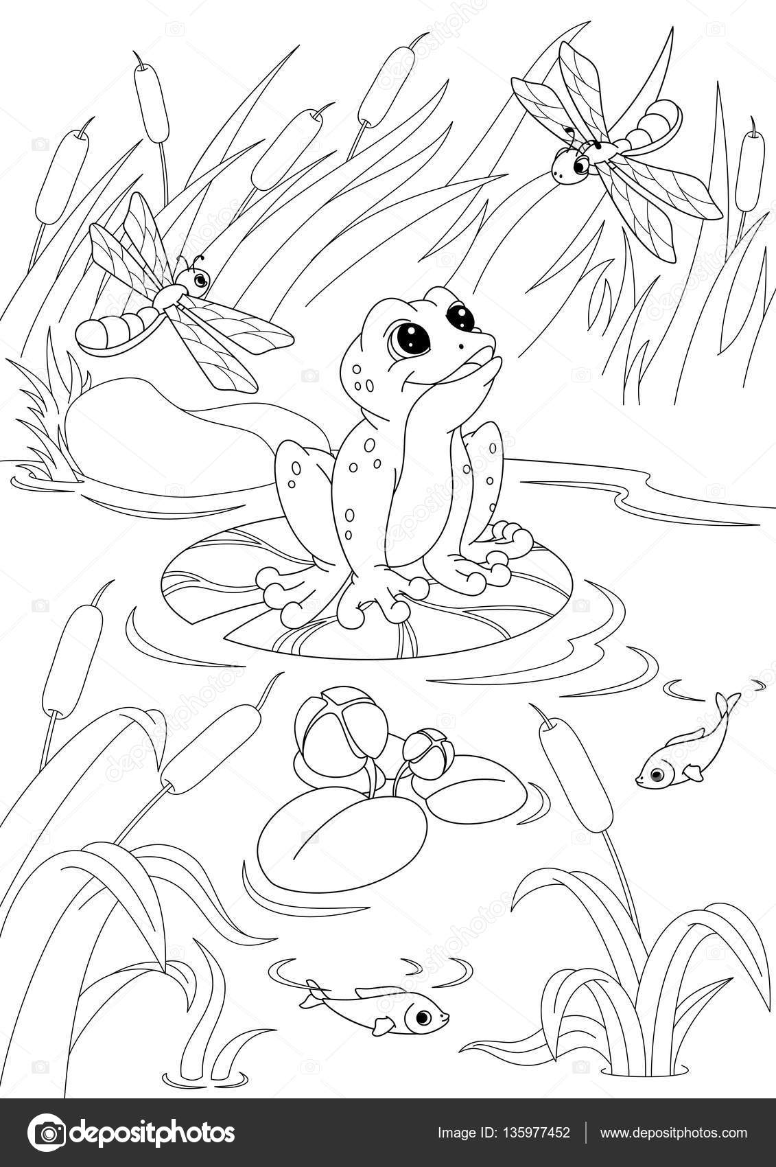 Pond Coloring Page — Stock Vector © Malyaka #135977452