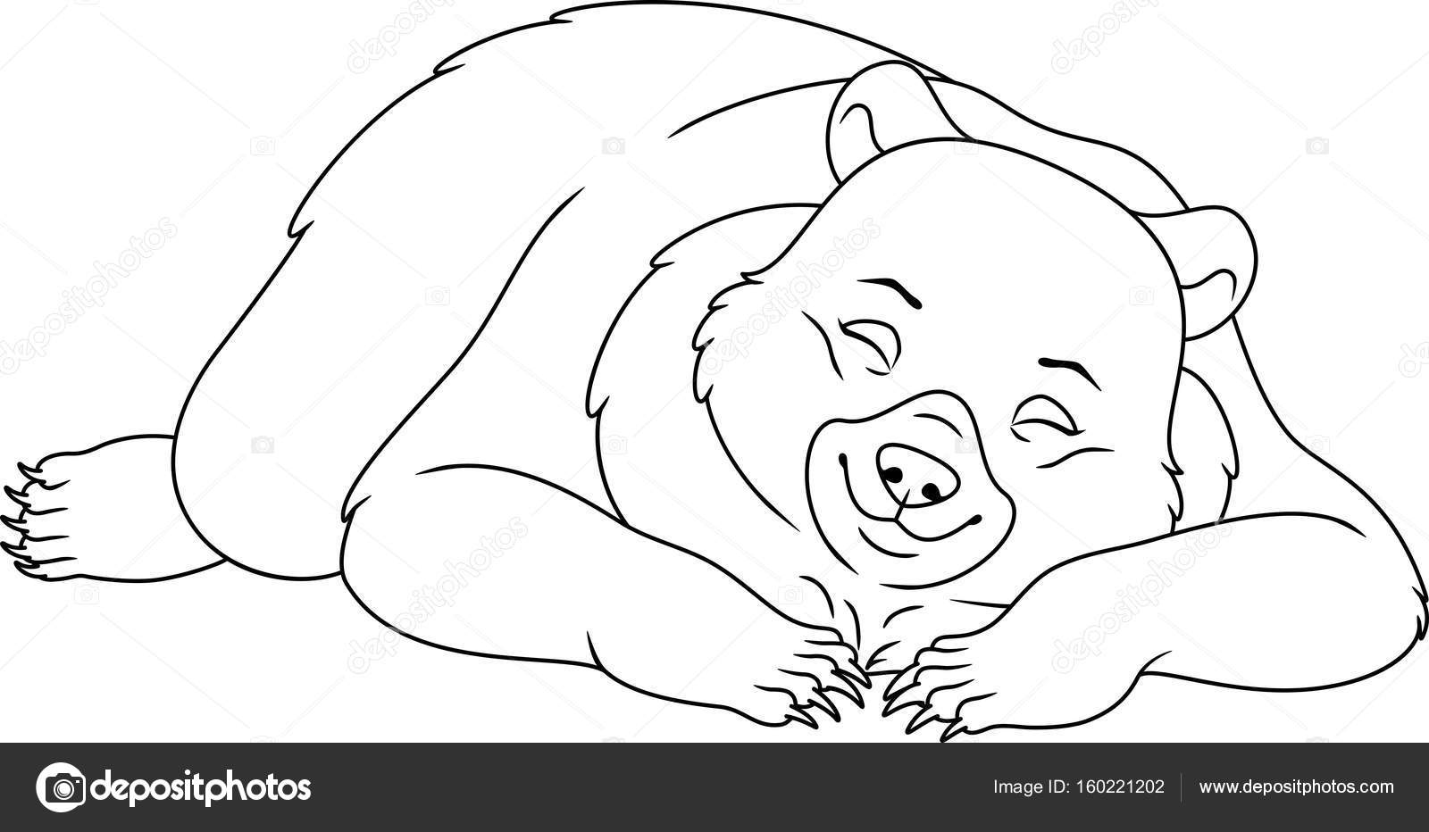sleeping bear coloring page stock vector