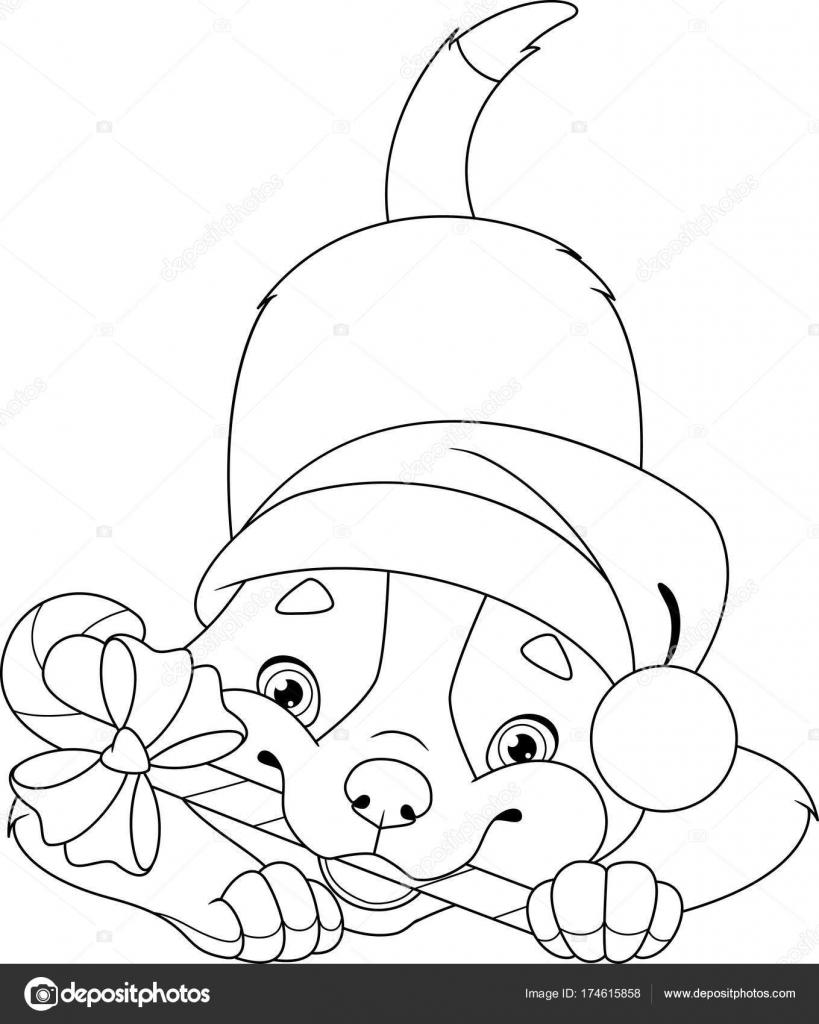 Noel Köpek Boyama Sayfası Stok Vektör Malyaka 174615858