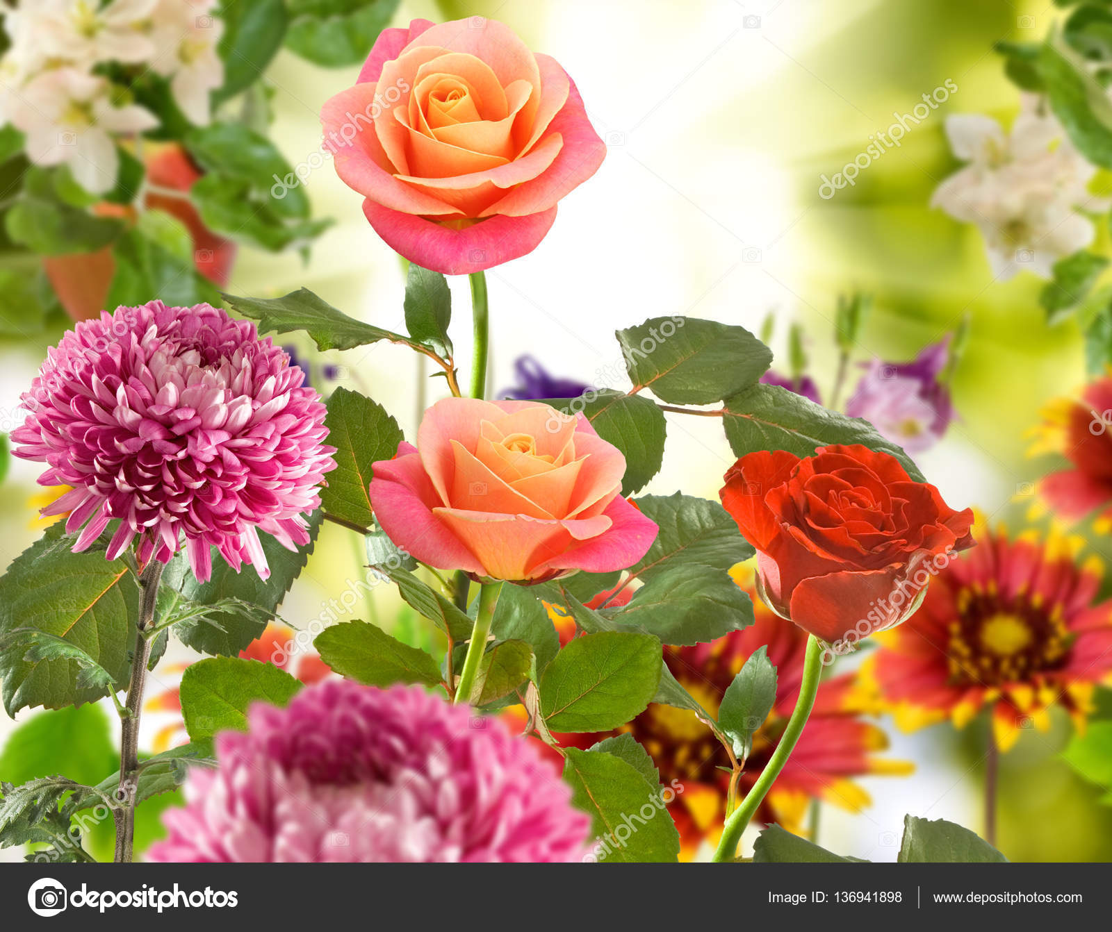 Bouquet of different flowers on a blurred background stock photo beautiful bouquet of different flowers on a blurred background photo by cooperr007 izmirmasajfo