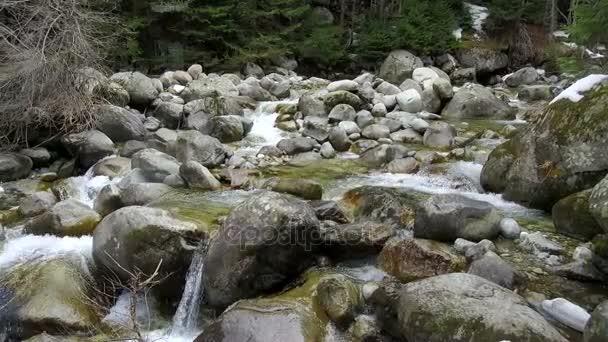 mountain river stones
