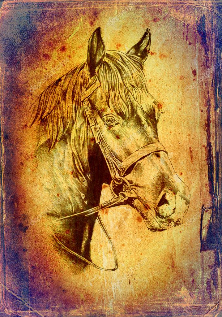 ᐈ Horse Drawing Stock Pictures Royalty Free Pencil Drawing Horse Images Download On Depositphotos