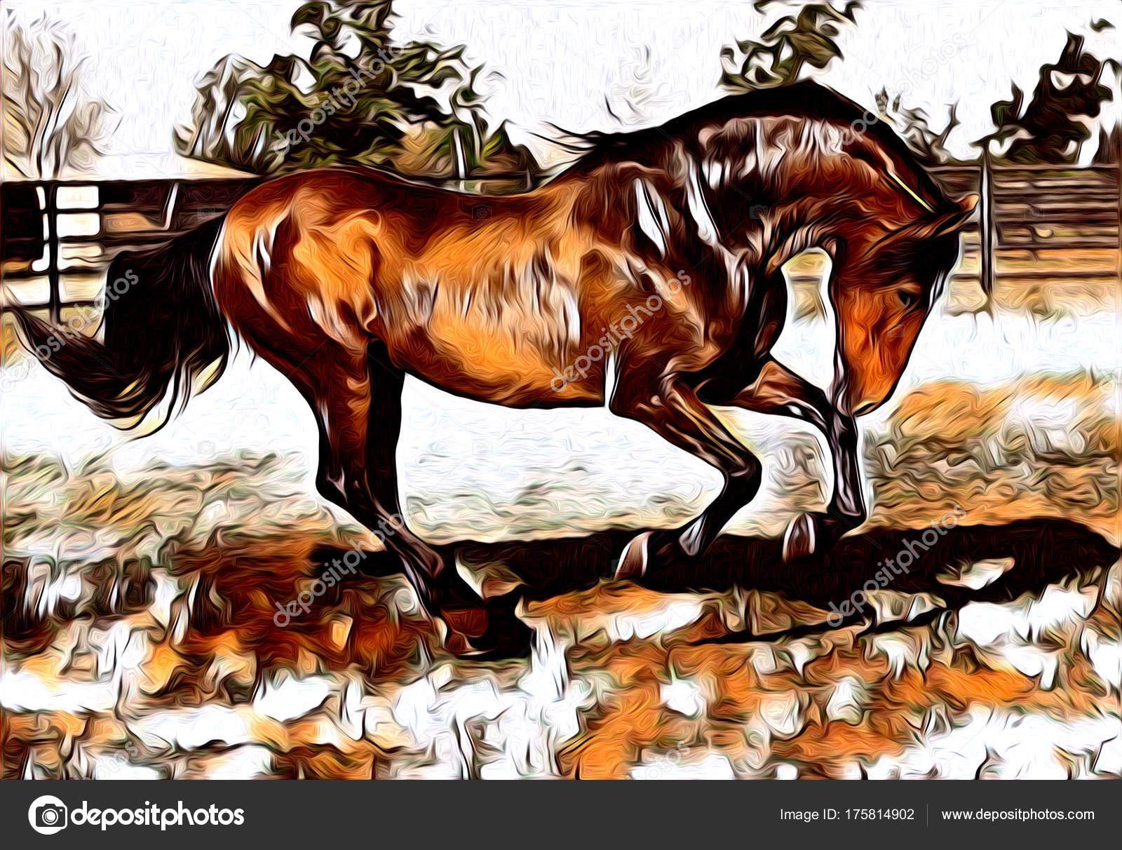 Freihand Pferd Kunst Abbildung Farbe — Stockfoto © maxtor7777 #175814902