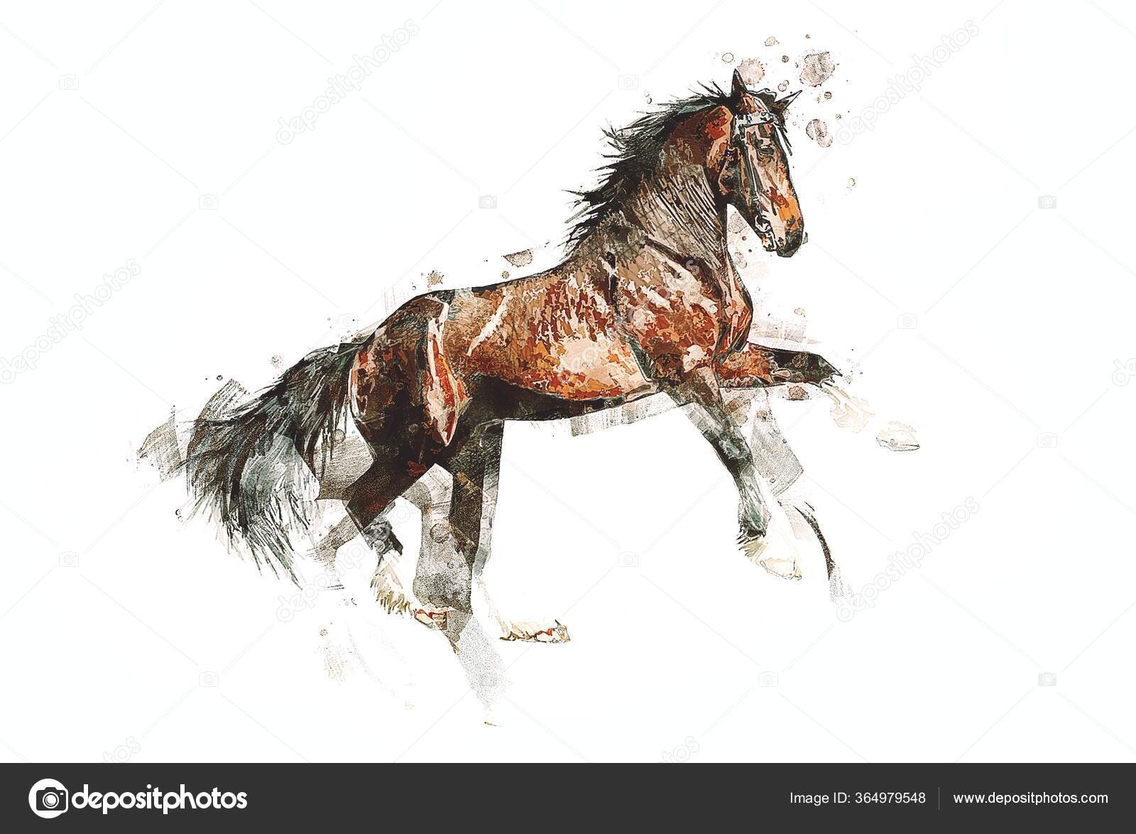 Colorful Horse Art Illustration Grunge Painting Stock Photo C Maxtor7777 364979548
