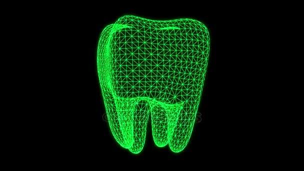 Animación de rayos x dental — Vídeo de stock © newb1 #170252654