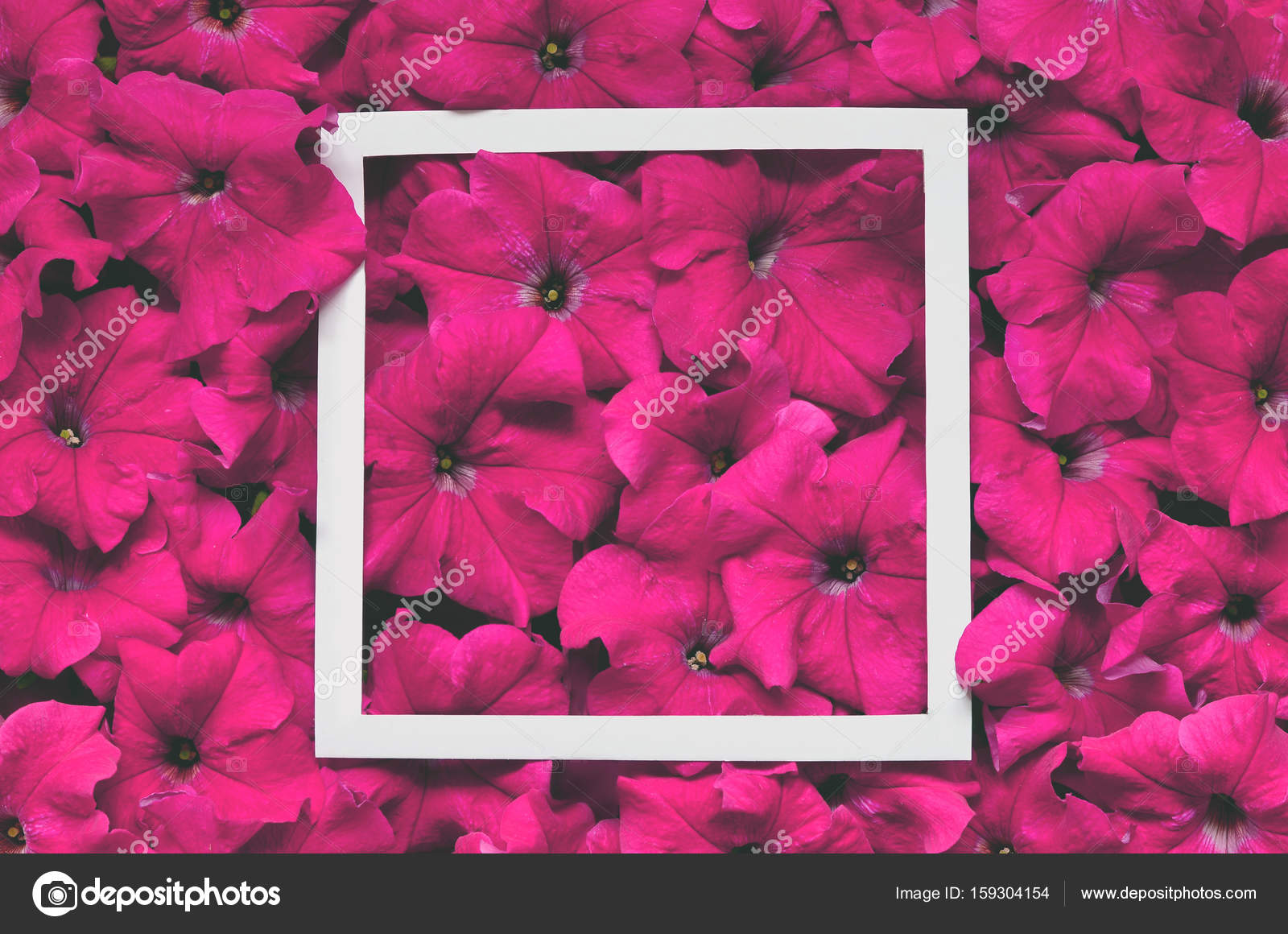 Creative Layout Made Of Flowers With Paper Card Note Flat Lay