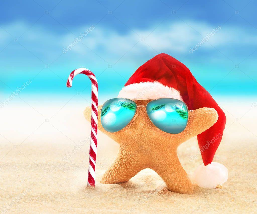Starfish in sunglasses on summer beach and santa hat.