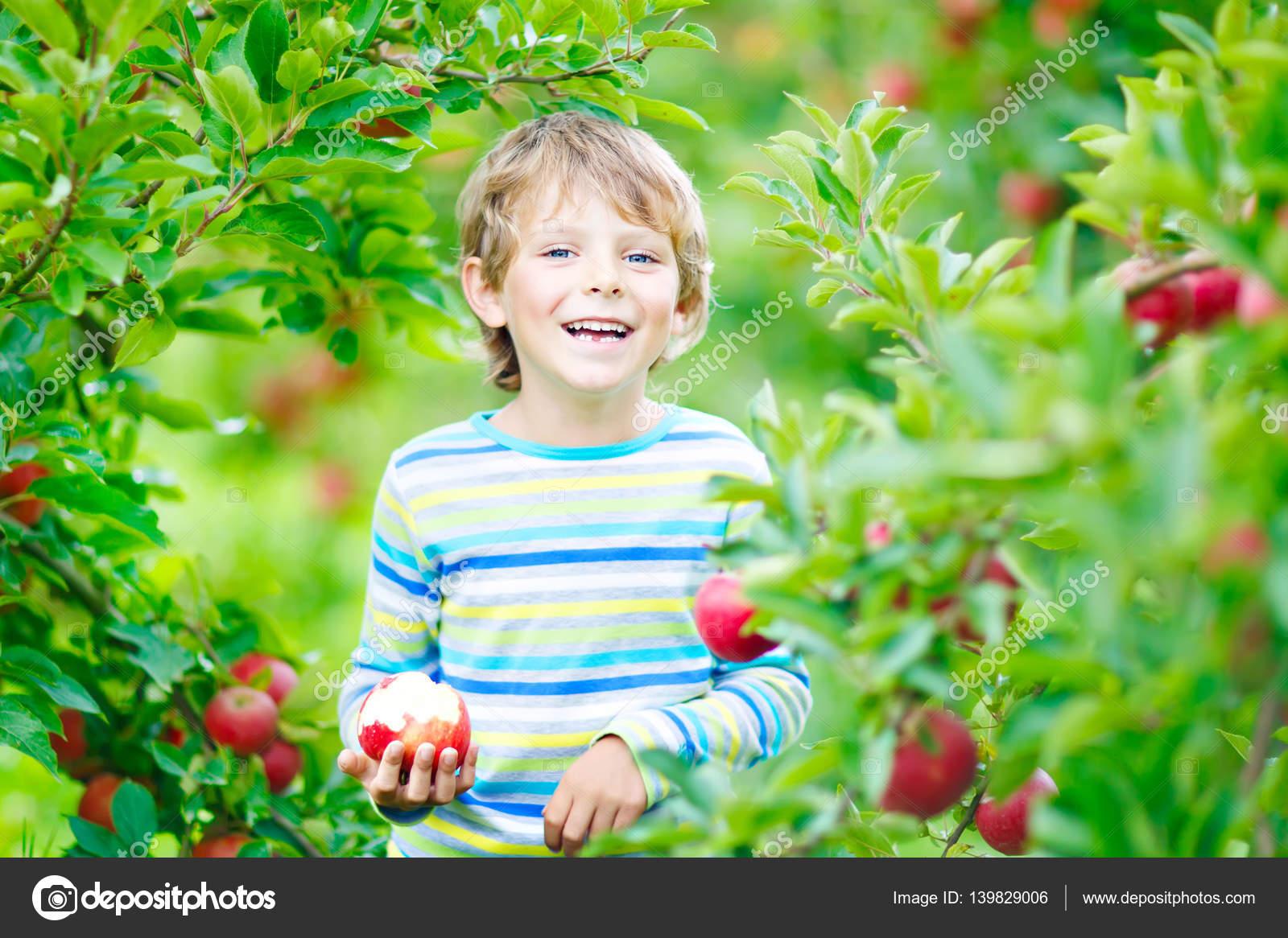 Красивые детей с яблоками 31