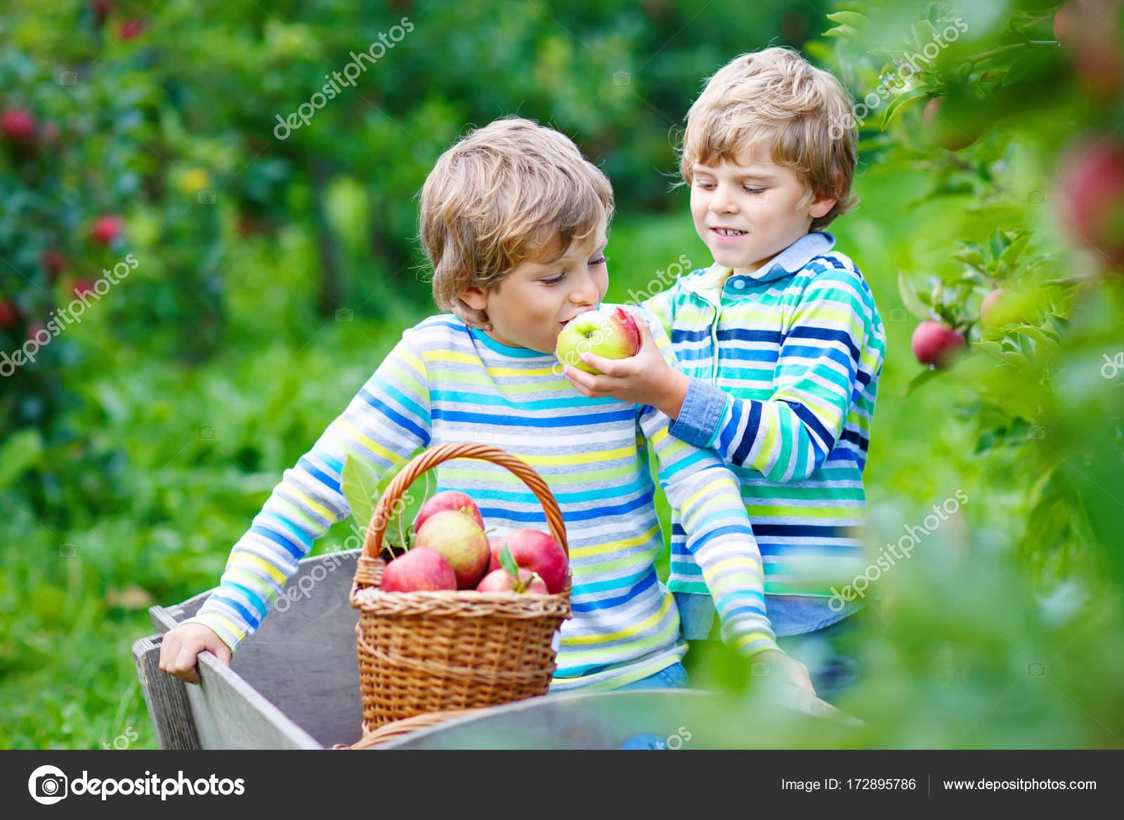 Красивые детей с яблоками 95