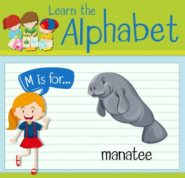 Flashcard letter M is for manatee