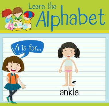 Flashcard letter A is for ankle