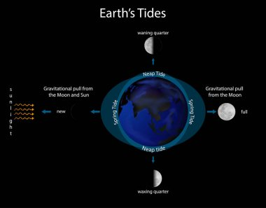 Diagram showing earth tides
