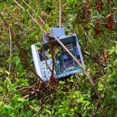 Fényképek A növényzettel benőtt számítógép