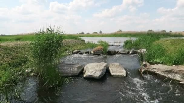 Staré jehlice jezu na řece Havel v létě. Brandenburg - Německo